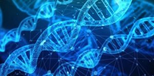 Haaruitval DNA testen.